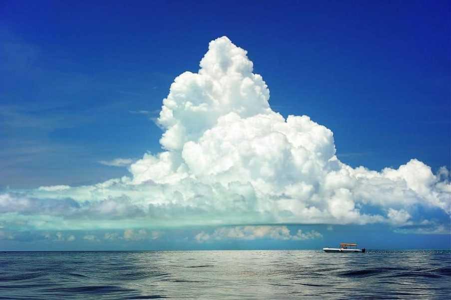 tendência em nuvem