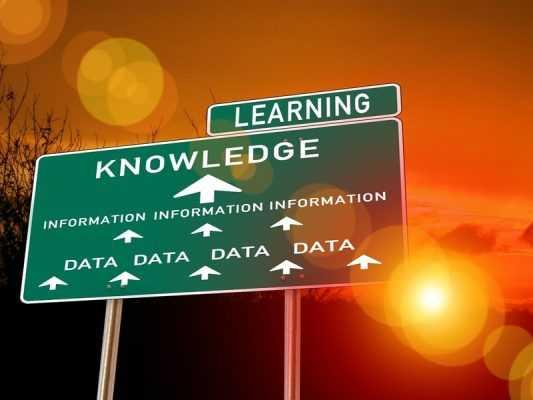 dados insights